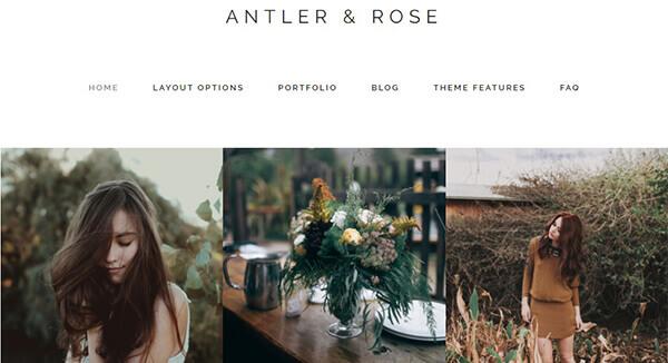 antler WordPress Theme