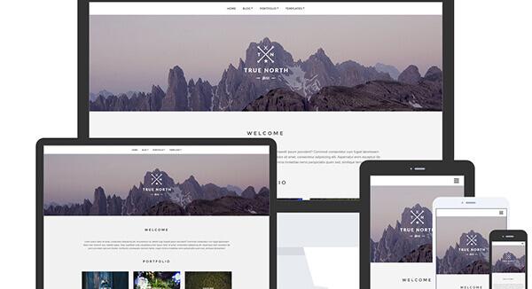 North WordPress Theme