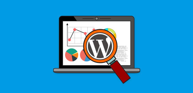 WordPress has many analytics plugins