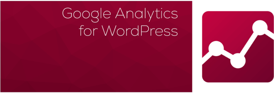 Google Analytics and Google Tag Manager WordPress plugin